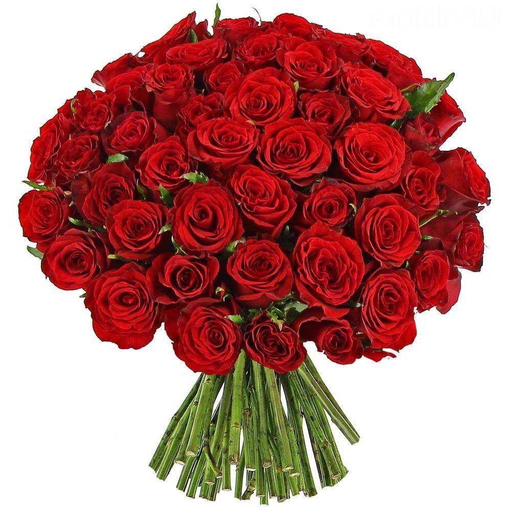 Quanto Costa Un Mazzo Di Fiori A Domicilio.Bouquet Di 50 Rose Rosse Esplosione D Amore Fiorista Spagnoli