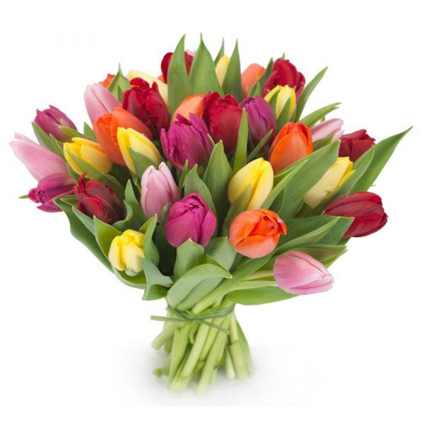 mazzo tulipani