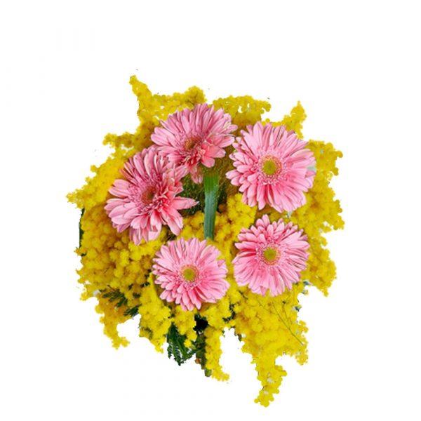 fiori di mimosa a domicilio