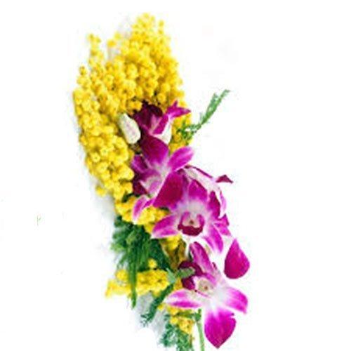fiori 8 marzo